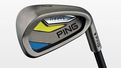 cavity view of Thrive iron