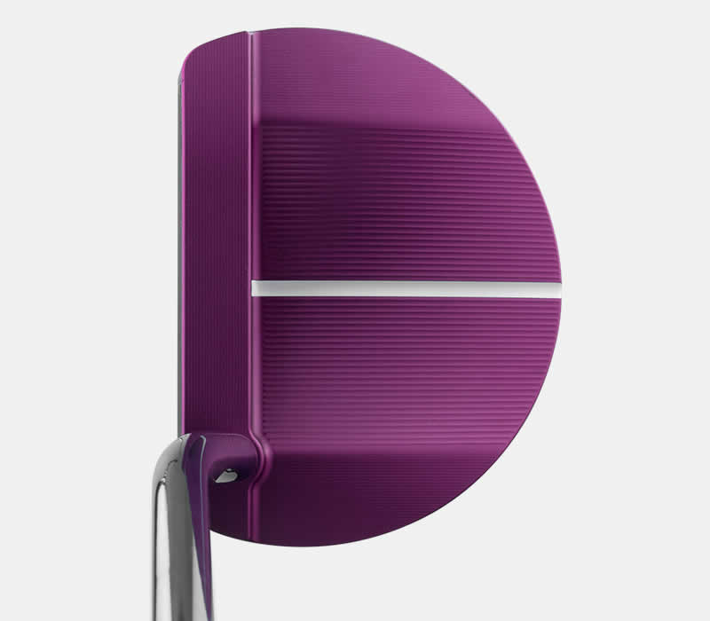 address view of G Le2 Echo putter