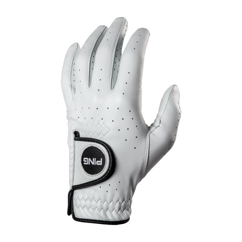 Back view of PING Tour Glove